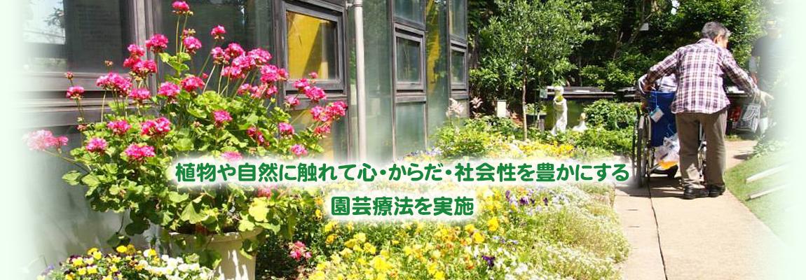 植物や自然に触れて心・からだ・社会性を豊かにする園芸療法を実施